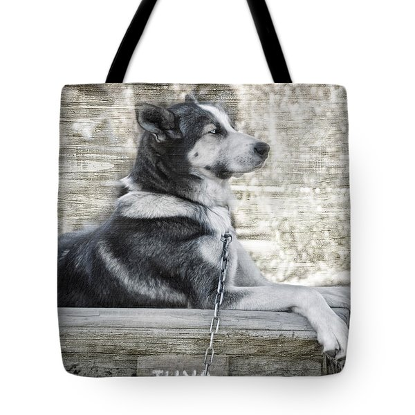 Tote Bag featuring the photograph Tuya - Sled Dog Of Denali by Dyle   Warren