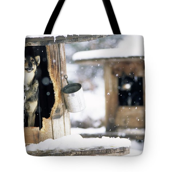 Sled Dogs Rest In Their Kennels Tote Bag