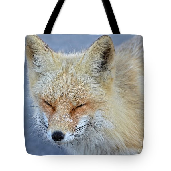 Sleep Walking Tote Bag by Sami Martin