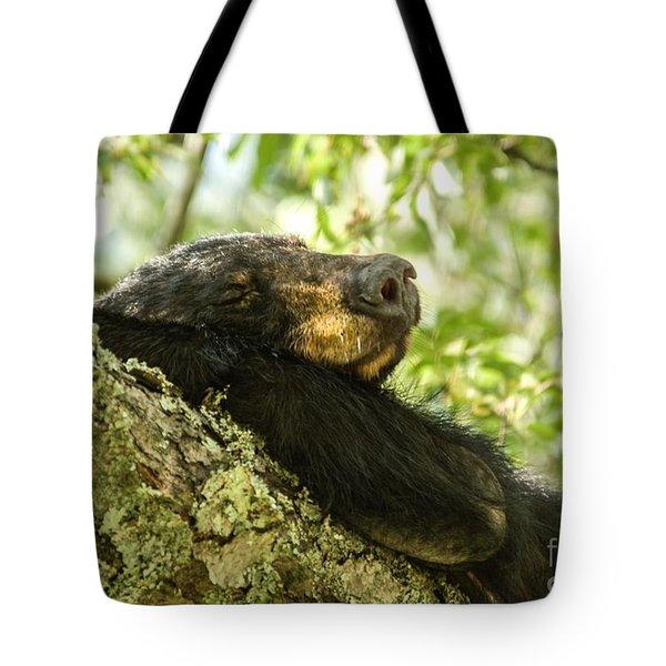 Sleeping Bear Tote Bag by Debbie Green