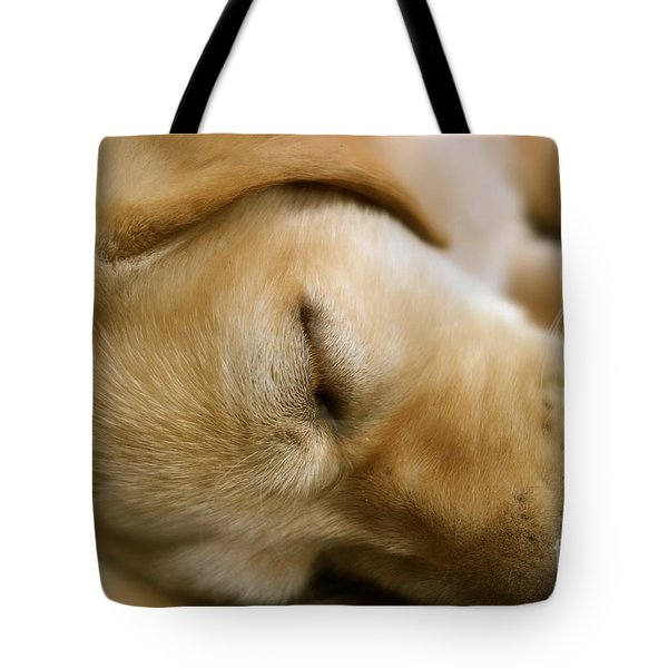 Tote Bag featuring the photograph Sleeping Beauty by Jacqueline Athmann
