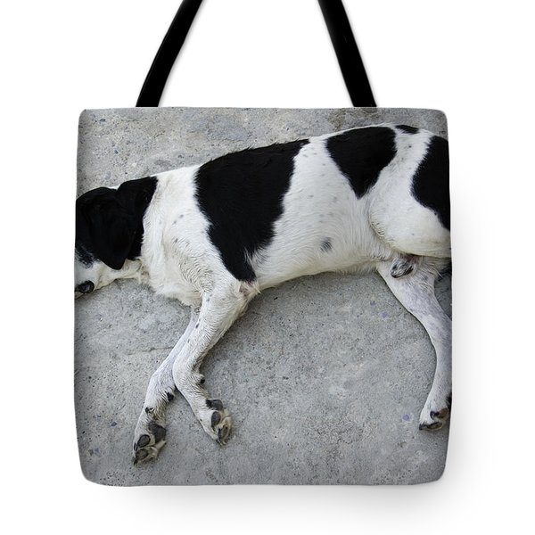 Sleeping Dog Lying On The Ground Tote Bag by Matthias Hauser