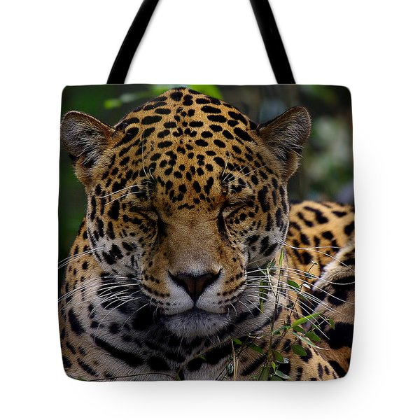 Sleeping Jaguar Tote Bag