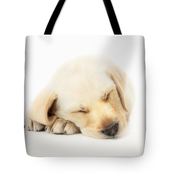 Sleeping Labrador Puppy Tote Bag