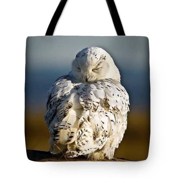 Sleeping Snowy Owl Tote Bag by Steve McKinzie