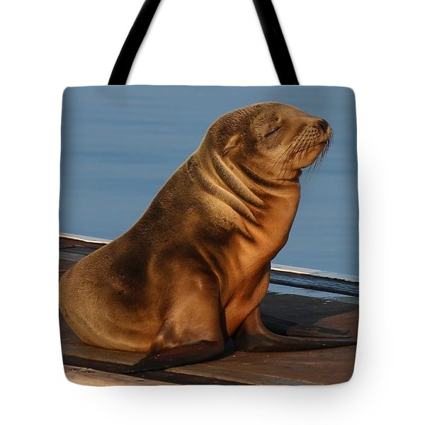 Sleeping Wild Sea Lion Pup  Tote Bag