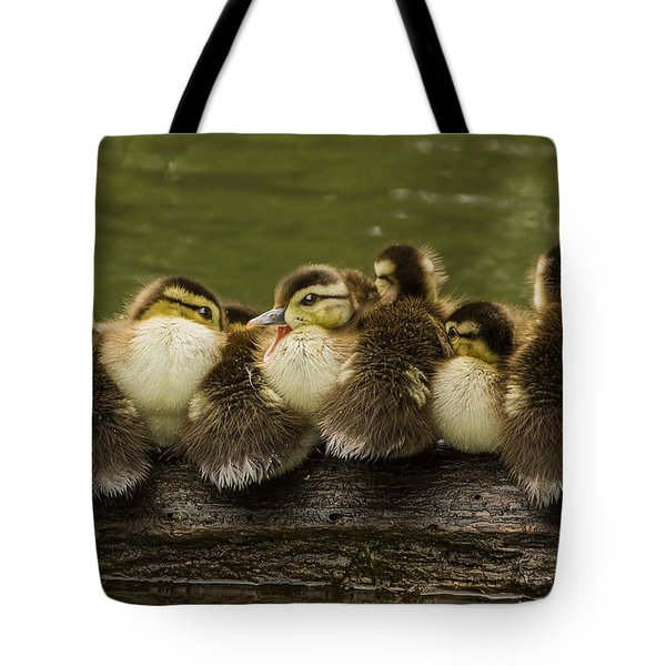 Sleepy Babies Tote Bag by Mircea Costina Photography