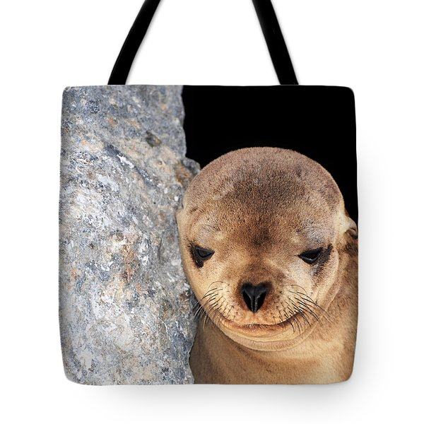 Sleepy Baby Sea Lion Tote Bag