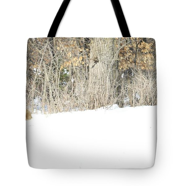 Tote Bag featuring the photograph Sleepy Time by Dacia Doroff
