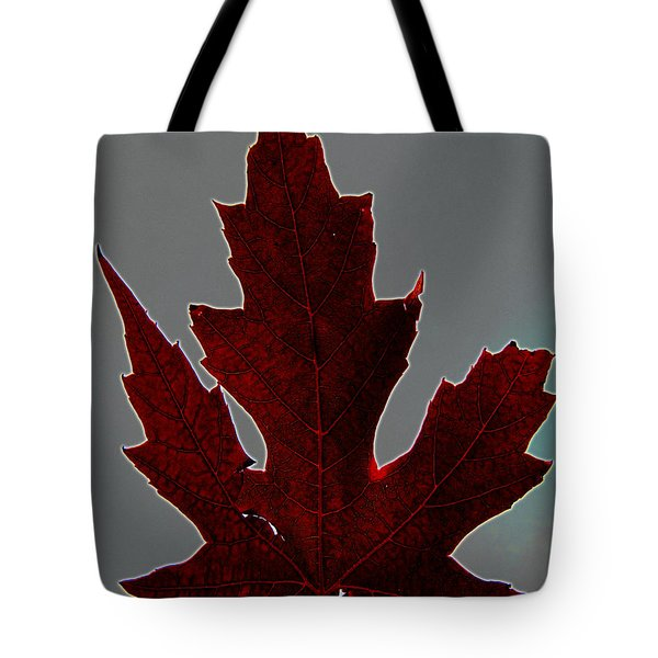 Slender And Pretty Tote Bag by Tina M Wenger