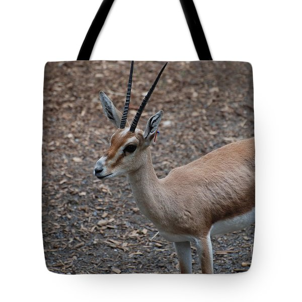 Slender Horned Gazelle Tote Bag by DejaVu Designs