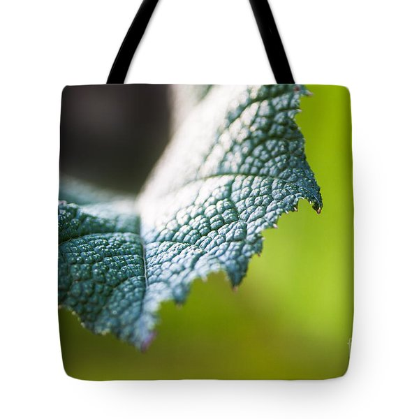 Slice Of Leaf Tote Bag
