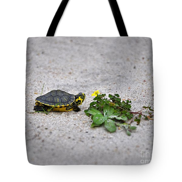 Slider And Sorrel In Sand Tote Bag