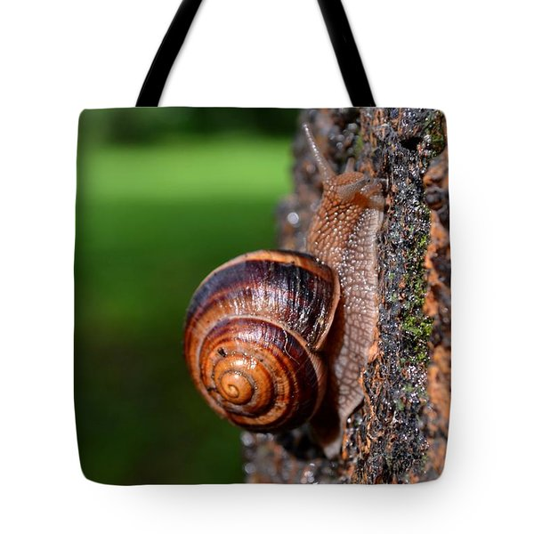 Slowly And Surely Tote Bag