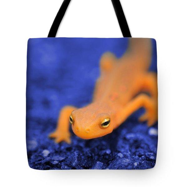 Sly Salamander Tote Bag by Luke Moore
