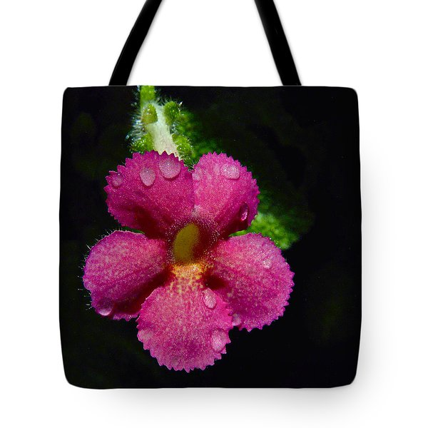 Small Beauty Tote Bag