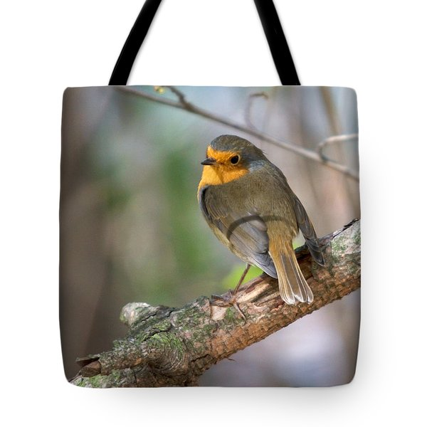 Small Bird Robin Tote Bag