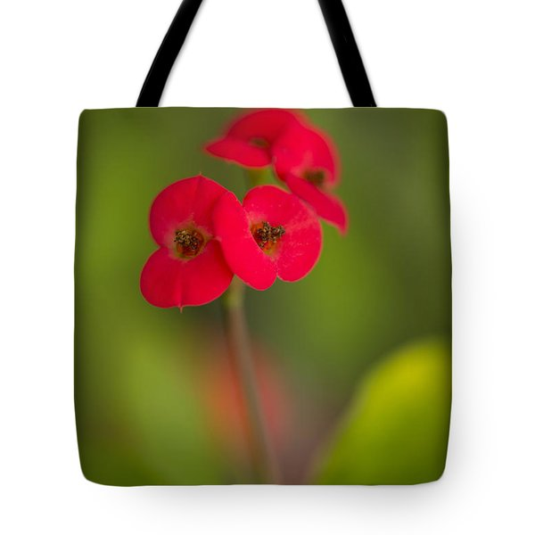 Small Red Flowers With Blurry Background Tote Bag