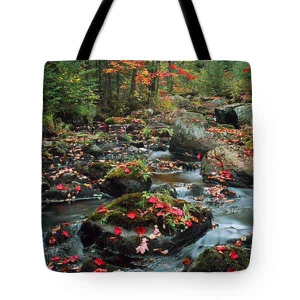 Small Stream In Fall, Upper Peninsula Tote Bag