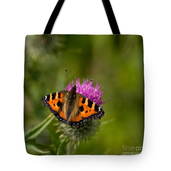 Tote Bag featuring the photograph Small Tortoiseshell Butterfly by Liz  Alderdice