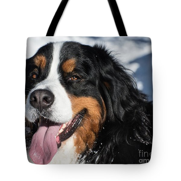 Smiling Bernese Mountain Dog In Winter Snow Tote Bag