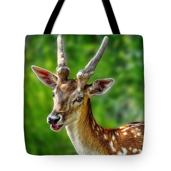 Smiling Deer Tote Bag
