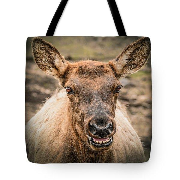 Smiling Elk Tote Bag by LeeAnn McLaneGoetz McLaneGoetzStudioLLCcom