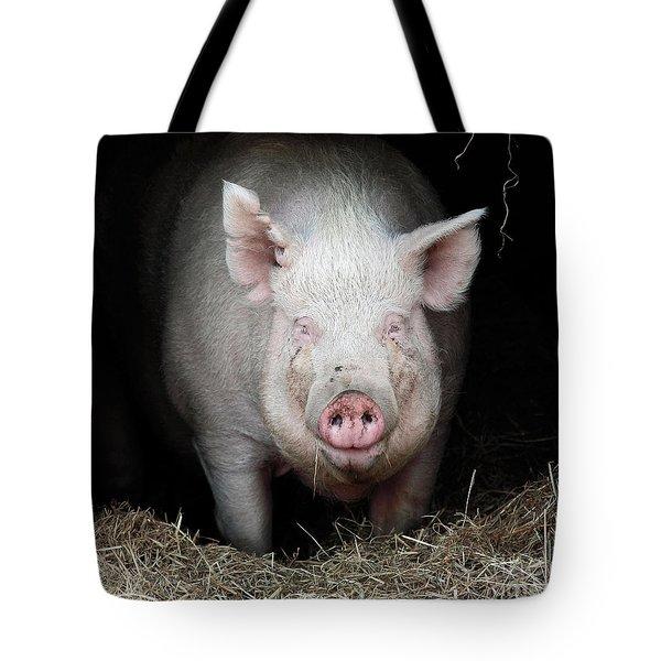 Smiling Pig Tote Bag