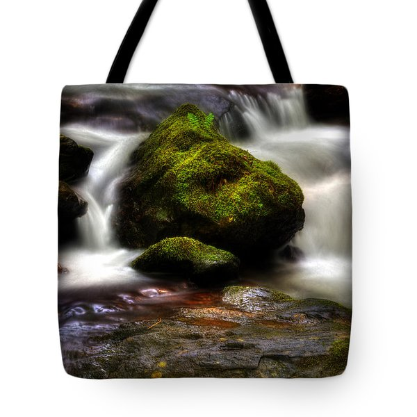 Tote Bag featuring the photograph Smith Creek Moss And Fern by Greg and Chrystal Mimbs