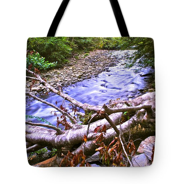 Smoky Mountain Stream Two Tote Bag by Frozen in Time Fine Art Photography