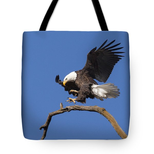 Tote Bag featuring the photograph Smooth Landing 6 by David Lester