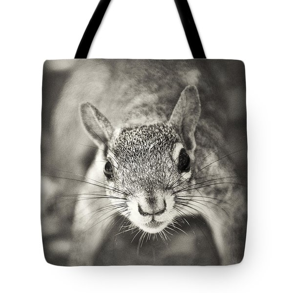 Snack Time Tote Bag by Patrick M Lynch