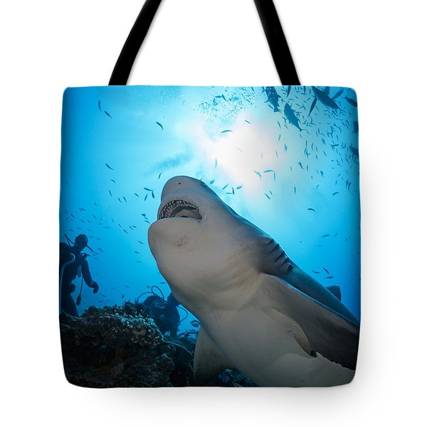 Snacking Bull Shark Tote Bag by Dave Fleetham