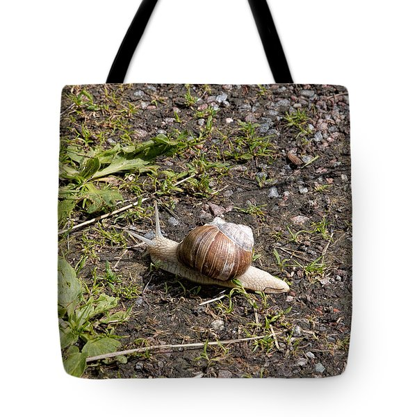 Tote Bag featuring the photograph Snail by Leif Sohlman