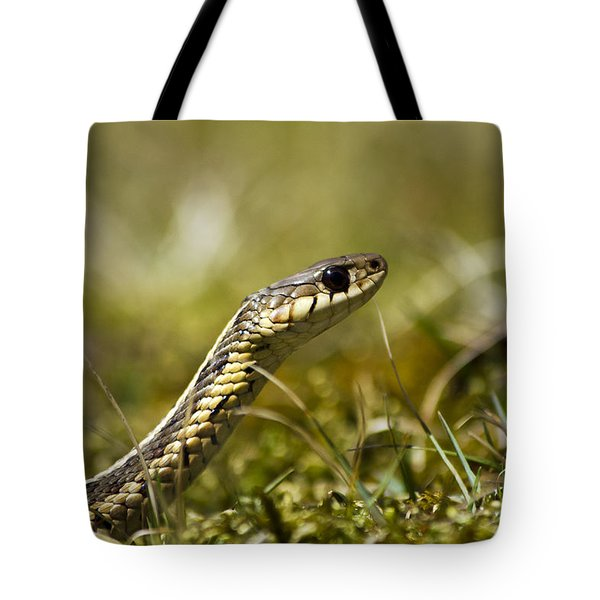 Snake Encounter Tote Bag