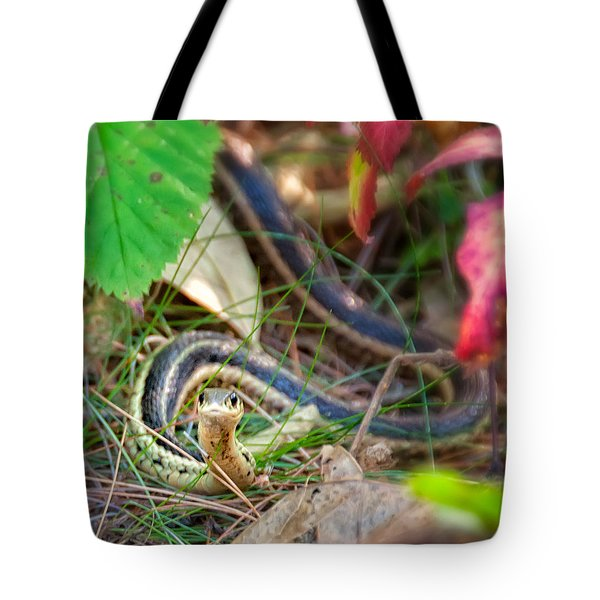 Snake Eyes Tote Bag