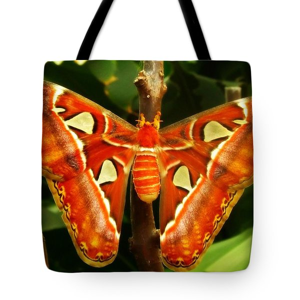 Tote Bag featuring the photograph Snake Head by Clare Bevan