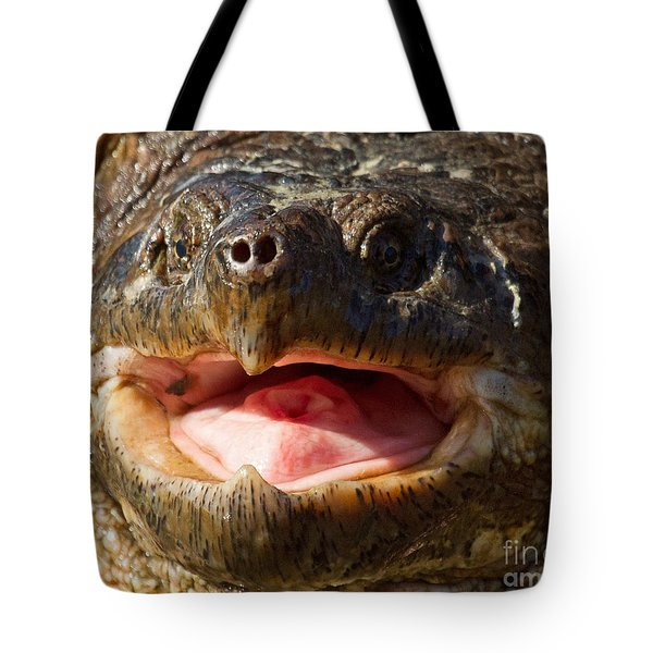 Snap Snap Tote Bag by Lloyd Alexander