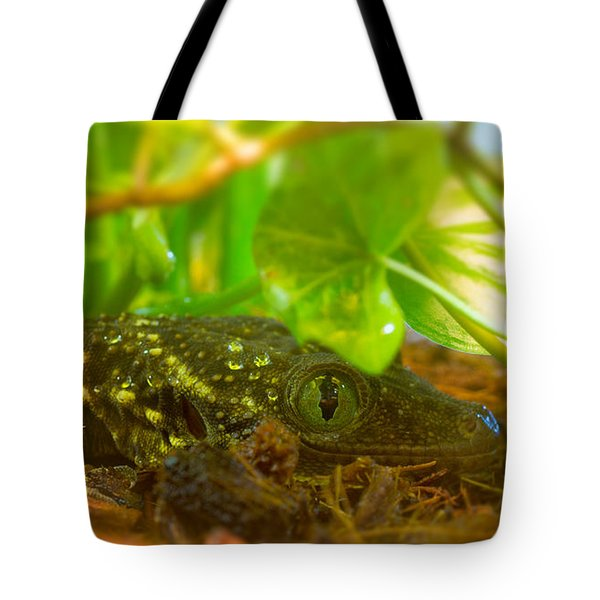 Sneaking And Looking Tote Bag