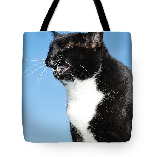 Sneezing Cat Tote Bag