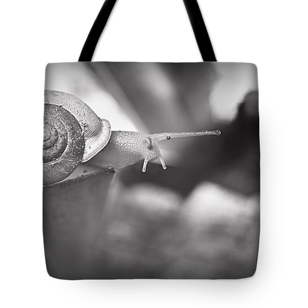 Snips And Snails... Tote Bag