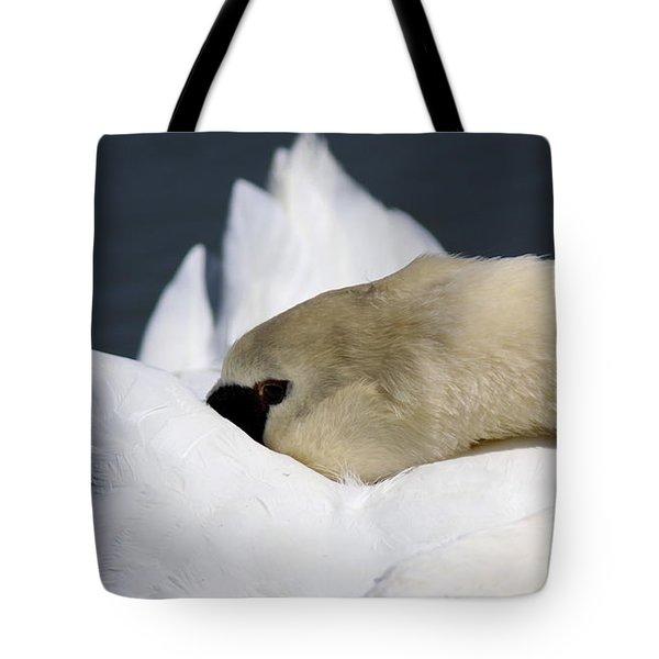 Snoozer - Swan Tote Bag by Travis Truelove