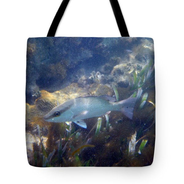 Snorkeling In The Tortugas Tote Bag