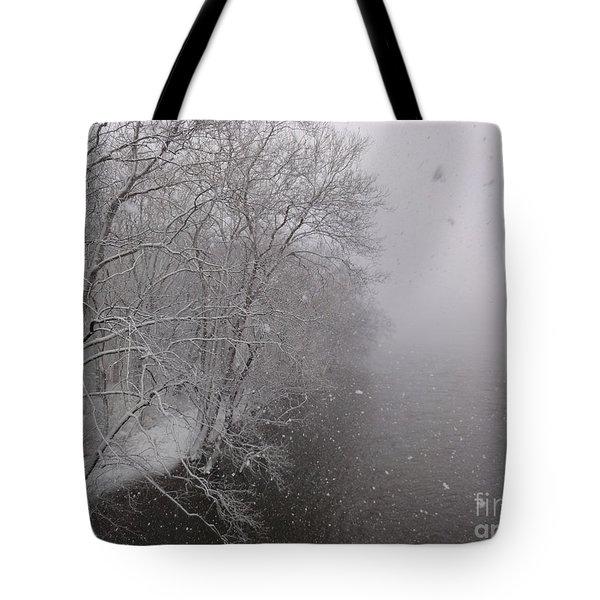 Snow At Bulls Island - 12 Tote Bag
