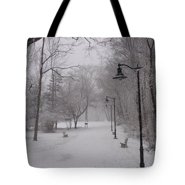 Snow At Bulls Island - 29 Tote Bag