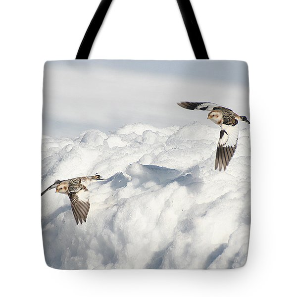 Snow Buntings In Flight Tote Bag