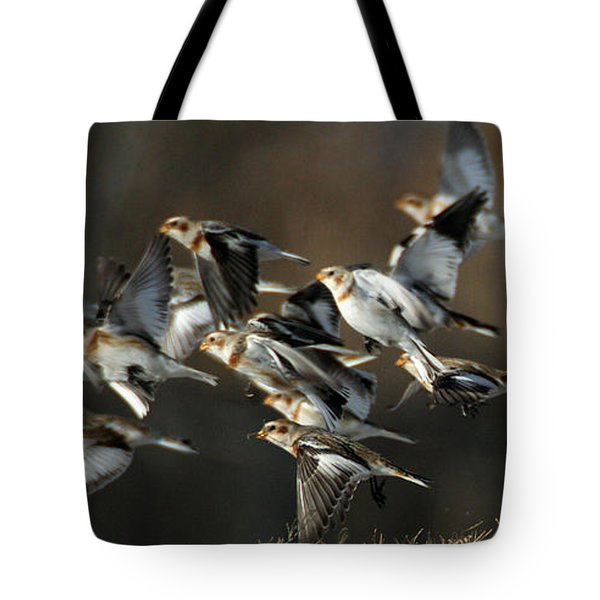 Snow Buntings Taking Flight Tote Bag