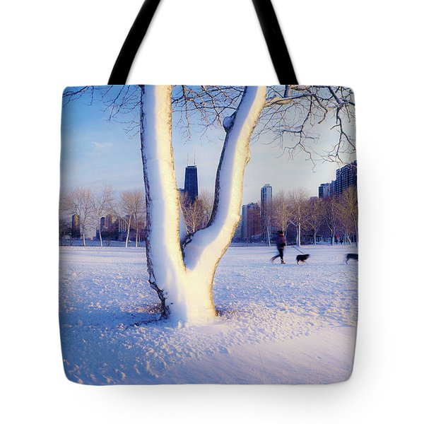 Snow Covered Lakefront Park In Winter Tote Bag