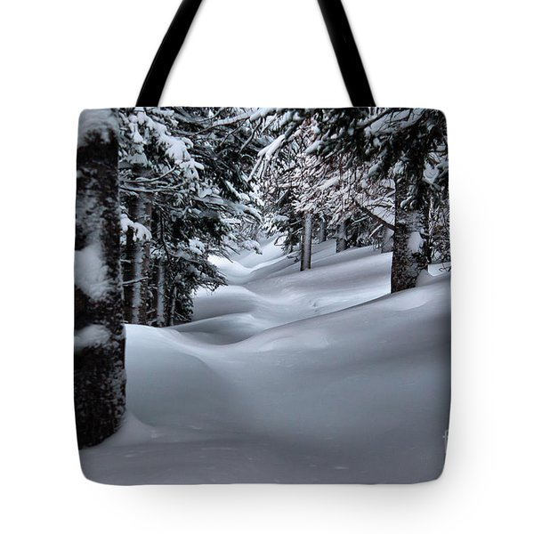 Snow Covered Trail Tote Bag