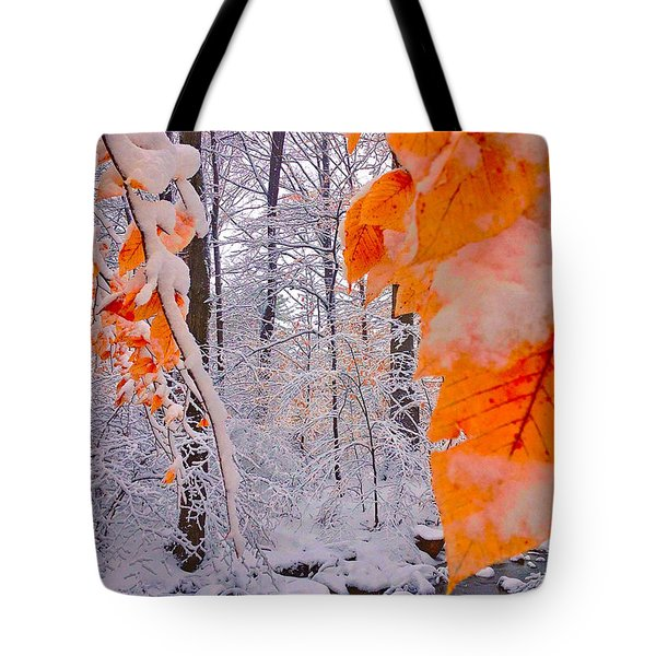 Snow Covered Woods And Stream Tote Bag